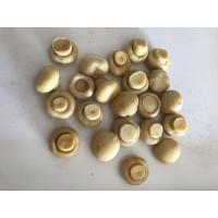 China 184g 425g 2840g Canned Button Mushrooms Canned Whole Mushrooms on sale