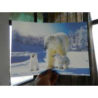 China OK3D home decoration and advertising exhibition 3d art photos printing wedding photos with magic 3d lenticular effect wholesale