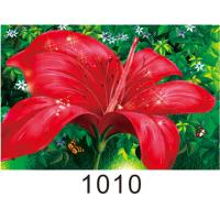 China 0.6mm PET+157g Coated Paper 3D Lenticular Pictures With 40*60cm Size wholesale