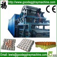 China Egg Tray/Fruit Tray/Cup Holder Machine on sale