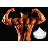 Quality Sedative Drug Xylazine Hydrochloride / Xylazine HCl CAS 23076-35-9 for Muscle for sale