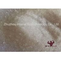 China High Purity Local Anesthetic Pain Killer Procaine Hydrochloride / Procaine HCl CAS 51-05-8 wholesale