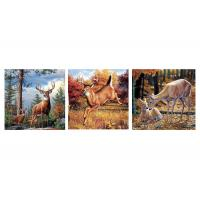 Buy cheap Custom 16x16 Inches 3d Lenticular Photo Flowers & Animals Mounted Wall Art Print from wholesalers