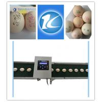 Quality Smart Egg Printing Machine With Touch Screen , Thermal Inkjet Printer For Eggs for sale