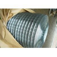 China Bright G.I. Welded Wire Mesh wholesale