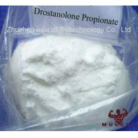 China Muscle Growth Drostanolone Steroid Drostanolone Propionate CAS 521-12-0 wholesale