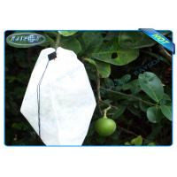 China Nonwoven Agiculture Plant Grow Bags For Fruit Growth and Protection , Potato Grow Bags wholesale