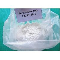 China Pain Reliever Local Anesthetic Powder Benzocaine Hydrochloride For Heal Wounds on sale