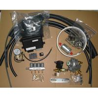 China Lo.gas CNG Multipoint Sequential Injection System Conversion kits, for 3 or 4cylinder EFI petrol Cars wholesale