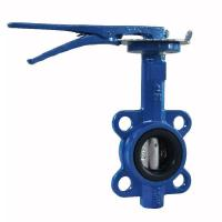 China Manual Cast Iron Butterfly Valve Wafer Pattern With Flexible Flange End on sale