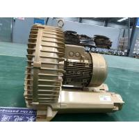 China Low Noise Single Phase Vacuum Pump With Variable Frequency Motor For Car Wash wholesale