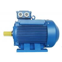 China High Voltage 3 Phase Induction Motor / Squirrel Cage Induction Motor wholesale