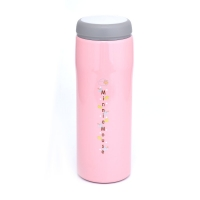 China 450ml 67x195mm BSCI Thermos Stainless Steel Food Flask wholesale