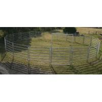 China Round Yard Panels For Sale 1.5m Gate. Locking Pins. . Victoria  wholesale
