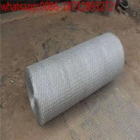 China PVC poultry netting/large chicken wire/chicken fence height/ chicken wire panels/4 foot chicken wire/wire mesh chicken wholesale