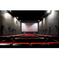 Quality 5.1 Surround Audio System 3d Cinema Equipment With Digital Video Projection for sale