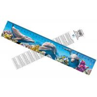 China Deep Images 3D Dolphin Cartoon Scale Lenticular Photo Printing / PET Plastic Straight Ruler wholesale