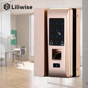 China Smart Apartment Glass Door Lock Support Password Fingerprint 188mm * 111mm wholesale
