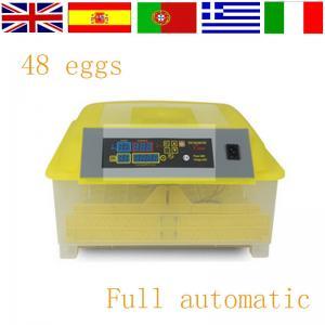 China Newest Hot sale automatic mini egg incubator wholesale