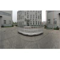 Quality 380V 50Hz Customized 10.5m Aluminum Alloy Temporary Suspended Platform ZLP1000 for sale