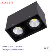 China Inside contemporary 2x10W 20W COB LED down light for kitchen used wholesale