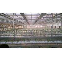 China Durable Custom Printed Bags / Hydroponic Coco Peat Fiber Filled Plant Growing Bags on sale