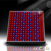 China 14W LED Aquarium Panel for Marine Fish and Coral Reef Growth wholesale