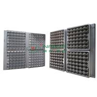 China 30 Holes Extrusion Egg Tray Or Carton Pulp Mold with CAD Design on sale