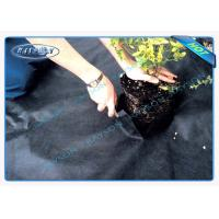 China Environment Friendly Ground Cover Weed Control Fabric In PP Spunbonded Non Woven Fabric wholesale