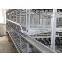 China Energy Saving Automated Poultry Equipment Simple Structure 1200×600×480 Mm wholesale