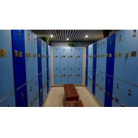 China Triple Tier Lockers With E - Lock , Blue Plastic Employee Lockers For Hotel wholesale