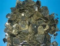 China Vermiculite wholesale