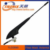 China rubber mast radio car antenna/ car am fm radio antenna TLD2890 on sale