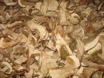 China IQF Boletus Edulis slices wholesale
