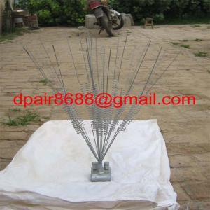 China pest repellent& Bird Repellent wholesale