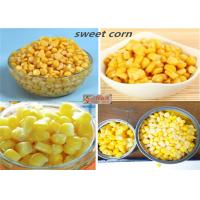 China Good Taste Canned Sweet Corn Kernels In Brine 425g High Temperature Sterilization on sale
