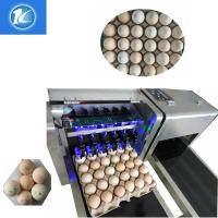 China Egg Jet Printer / Food Edible Ink Printer For Chicken Farm With Silver Conveyor wholesale
