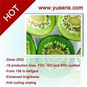 China Waterproof Glossy Inkjet Photo Paper 260g A4 wholesale