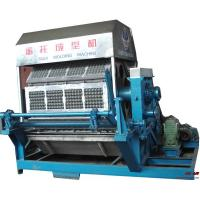 China Egg tray production line on sale
