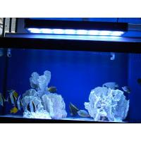 China Aquarium LED Light for Fish Tank, Coral, Reef (Apollo 20) wholesale