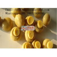 China Canned marinated champignon mushroom with good quality on sale