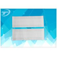 China Medical Disposable 2 Ply Face Mask With Earloop / Filter Paper wholesale