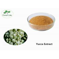 China Natural Pure Yucca Plant Extract Powder 50% Sarsaponin for Odor Removing wholesale