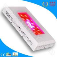 China 90W LED Grow Lights for Greenhouse wholesale