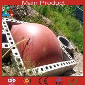 China energy Application china biogas plant wholesale