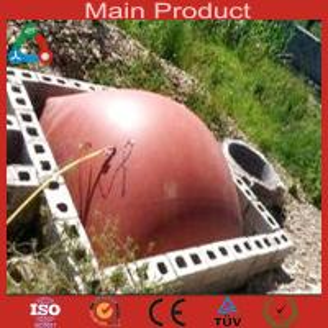 China Medium Size Anaerobic Digester China Biogas Plant wholesale