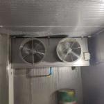 China Blast Durian Cold Storage wholesale