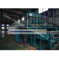 China High Automation Egg Carton Making Machine For Egg Tray / Fruit Tray / Wine Tray on sale