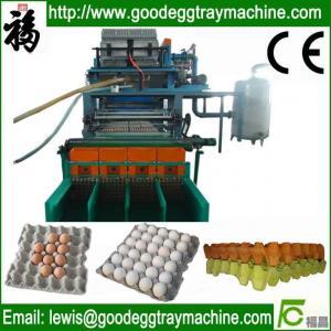 China Paper Pulp Tray Machine on sale