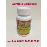 China Pure Garcinia Cambogia with HCA Weight Loss Product Slimming Capsule Dietary Supplements wholesale
